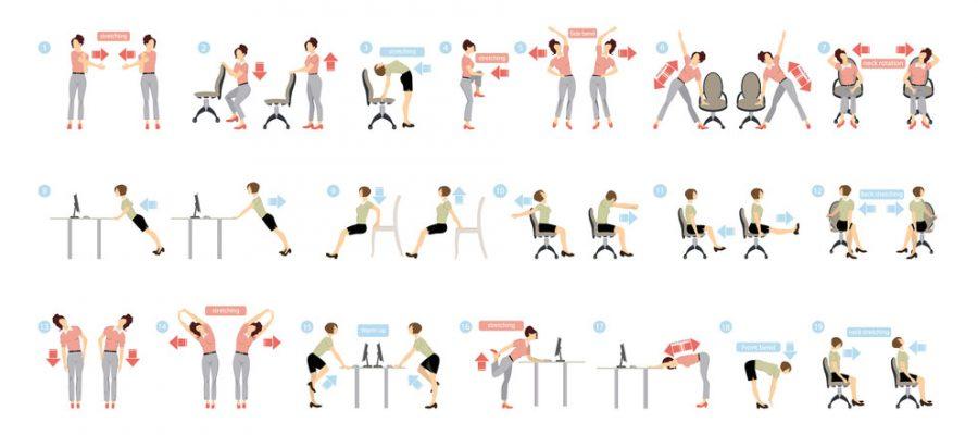 Corrective Exercises- Chiropractor Pensacola
